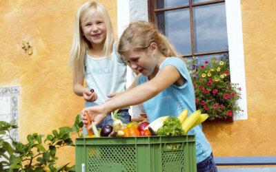 Hilfe, mein Kind isst kein Gemüse!