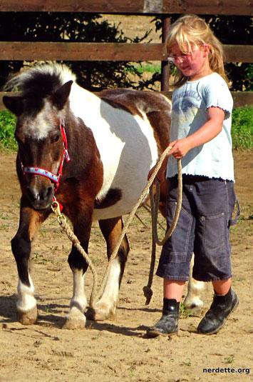 Mädchen führt Pony