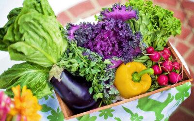Nachhaltige Lebensmittel: Einkaufen leicht gemacht