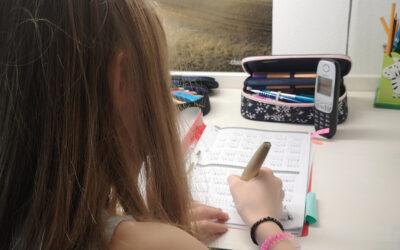 Rückblick auf ein Jahr Homeschooling