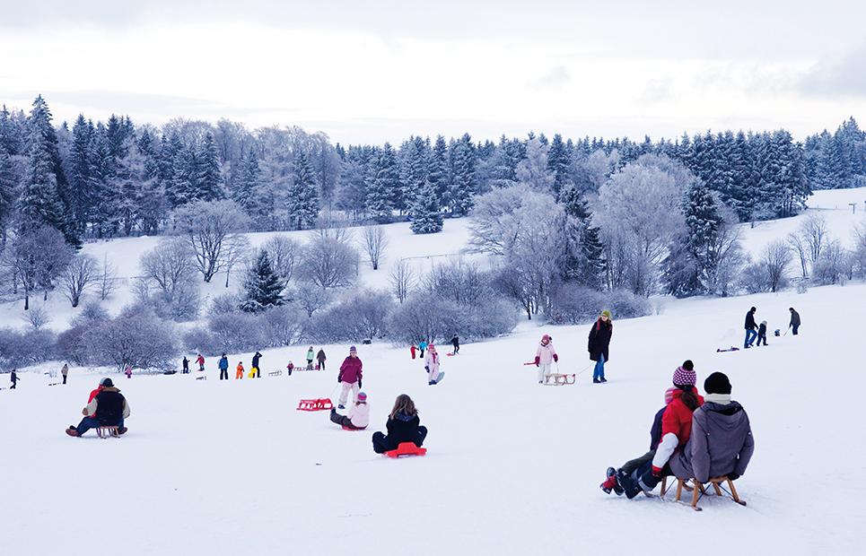 Eine Schnee bedeckte Landschaft mit vielen Schlittenfahreren