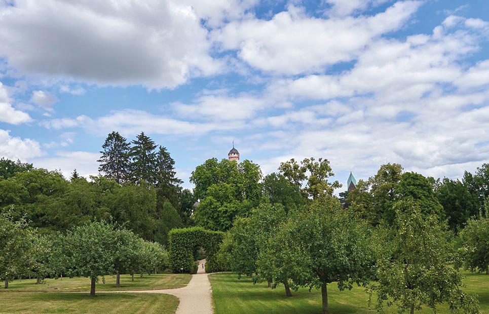Wissensgarten im Schlosspark